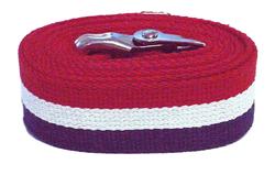 60 inch Patriot Stripe Gait Belt