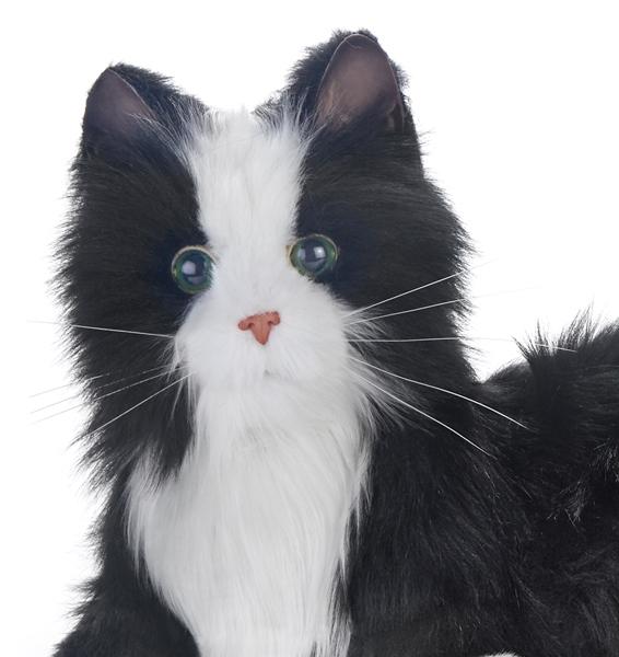 Joy-for-All-Companion-Pet-Cats