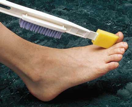 Dr. Joseph's Footbrush Replacement Sponges