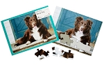 Active Minds 13 Piece Puzzles