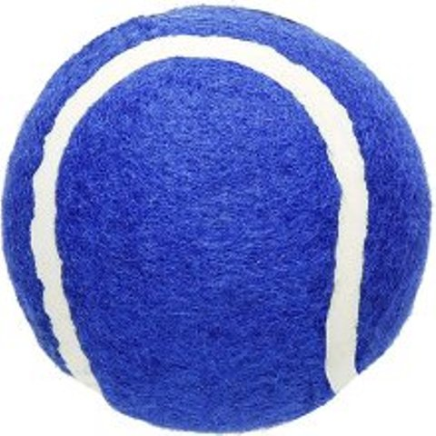 Penco Blue Walkerballs