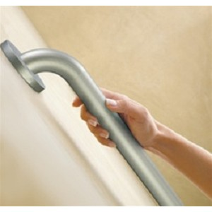 12 inch Moen Peened Grab Bar - Discontinued