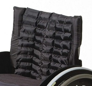 Action Twister Back Support Cushion